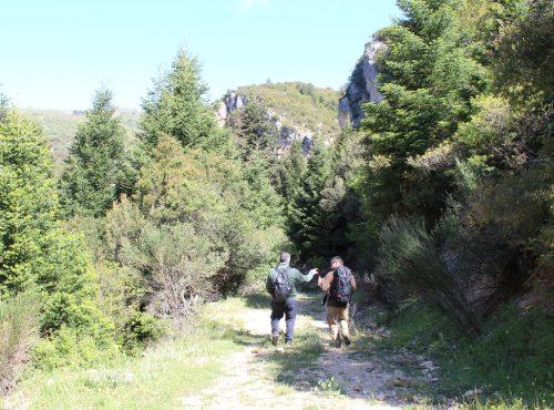 Ηiking on Trails of Vamvakou