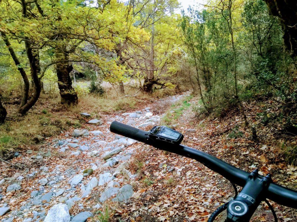 Vamvakou Revival_Trails (1)