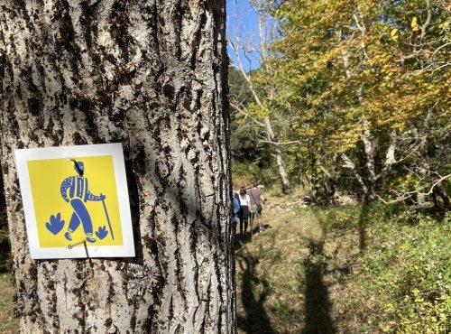 Autumn hiking on Parnon
